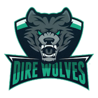 Dire Wolves – Overwatch Team